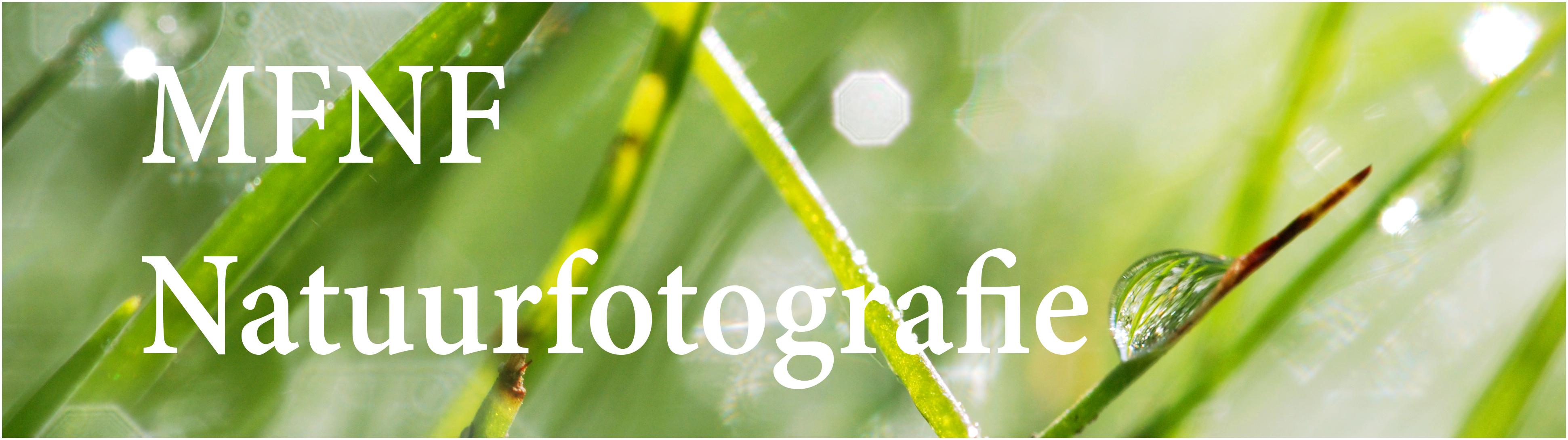 Fotografie MFNF Natuurfotografie